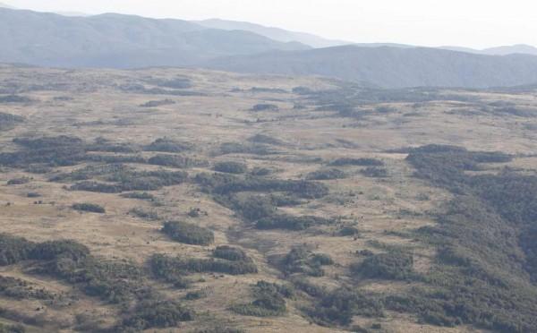 planicie en campo de isla de chiloe