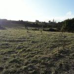 Terreno de 5 hás en Curahue - Isla de Chiloé