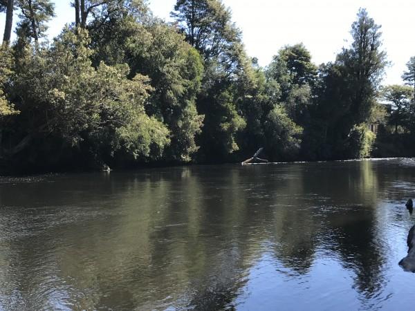 rio maullin